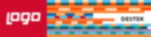 Deltasoft | Logo Versiyon Destek Dökümanı