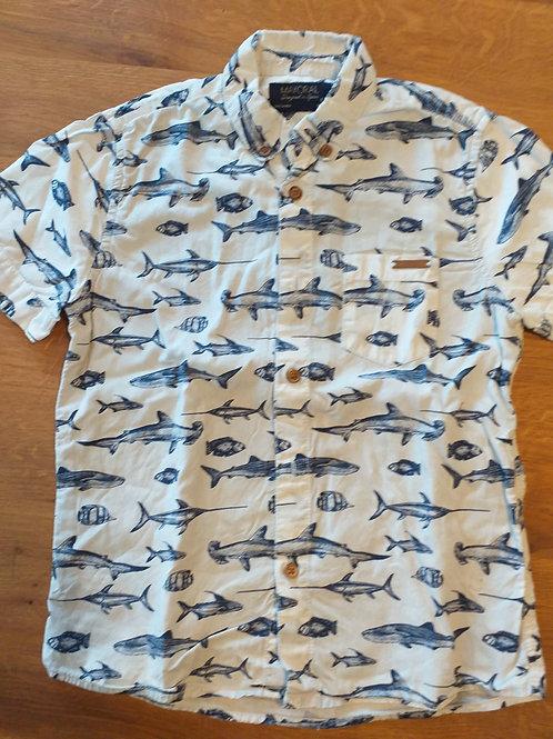 hemdje haaien