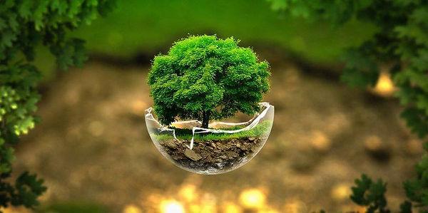 Ecologisch leven is niet langer duur en moeilijk met onze milieu- en klimaatvriendelijke producten