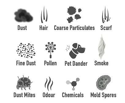 allergens1.jpg