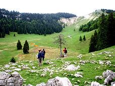 Paysages et randonnées,sur place dix circuits les plans à disposition dans les gîtes.