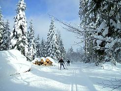 randonnée nordique.