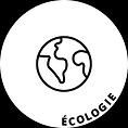 CONCEPT V - MARKETING DURABLE - ECOLOGIE
