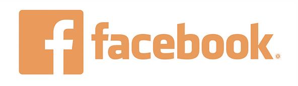 virtual FB.png