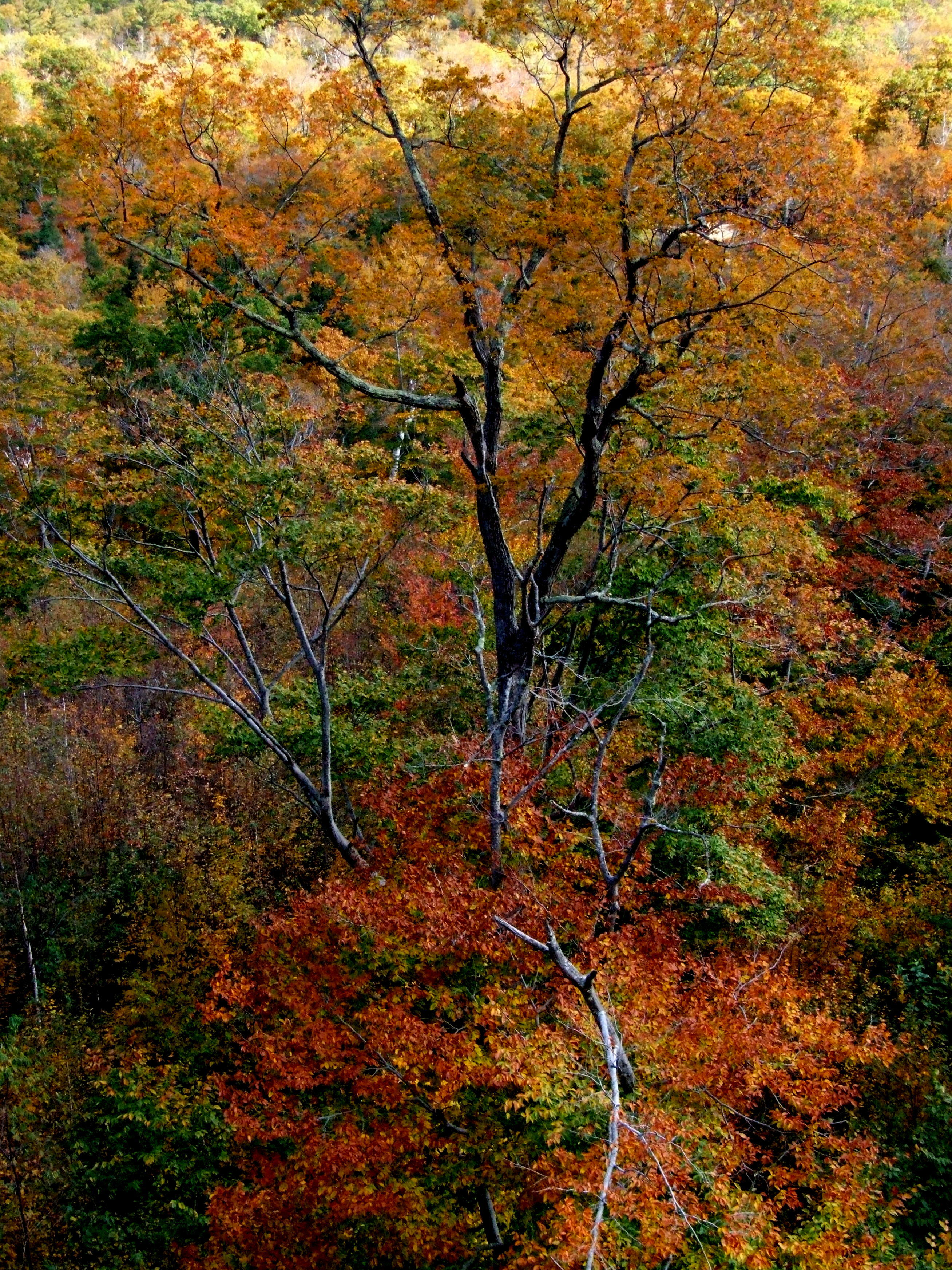 Colours of New England 2