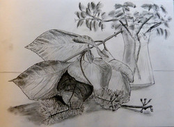Leaves with vase - pencil and ink drawing