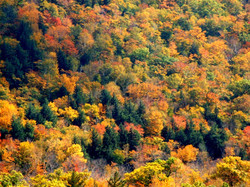 Colours of New England 3