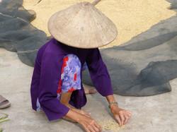 Photographs, Vietnam & Cambodia 19