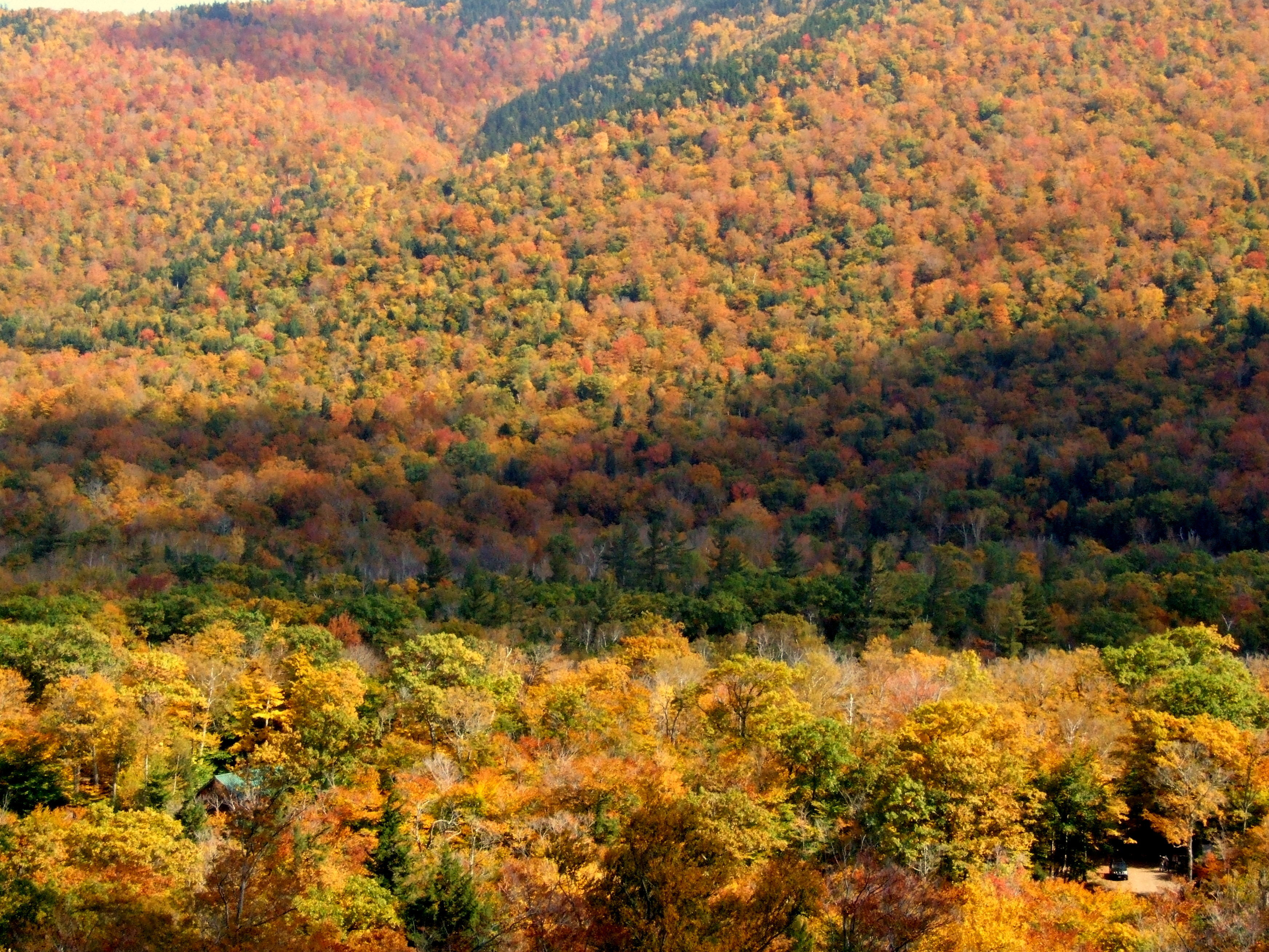 Colours of New England 1