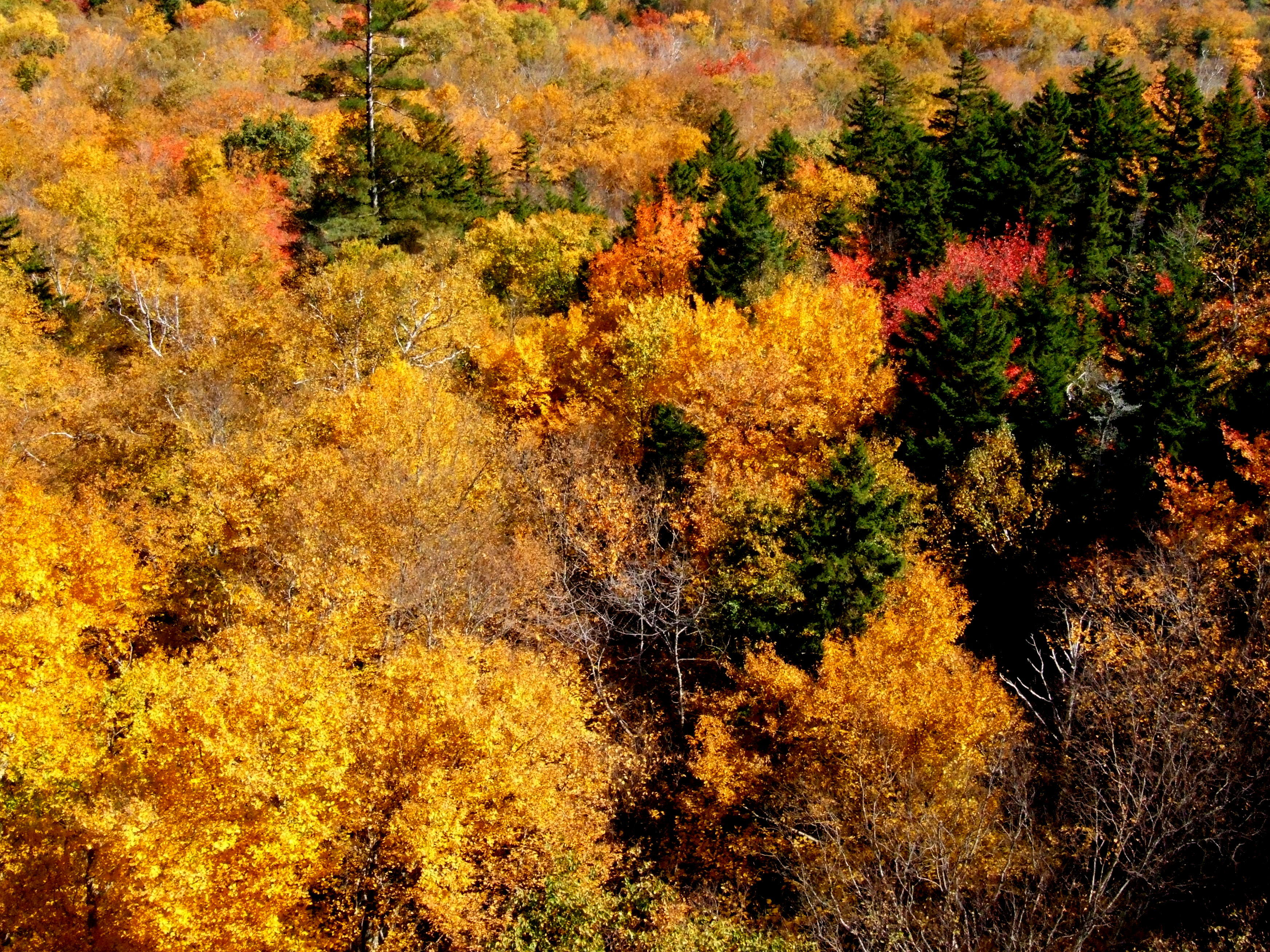 Colours of New England 4