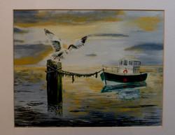 Seagull settling for the night