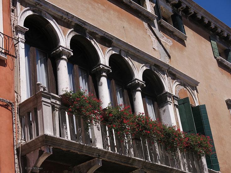 Window Columns
