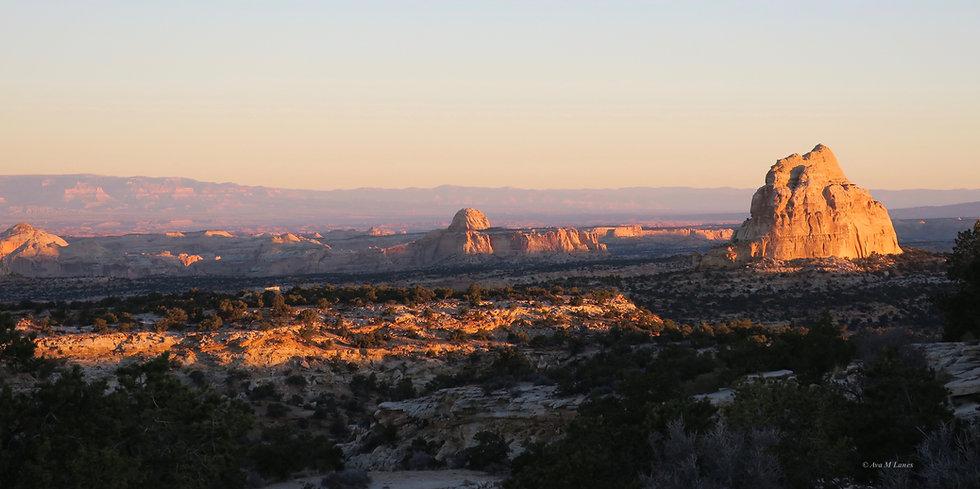 Pano View