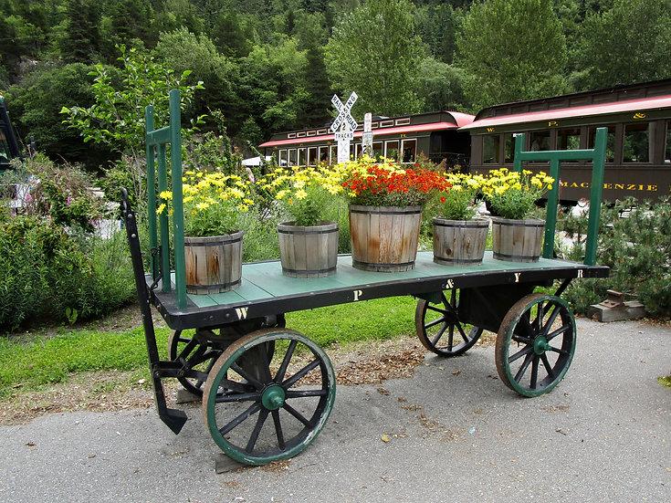 Wagon In Main