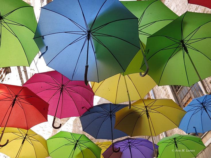 Umbrellas Forever