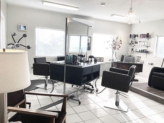 Salon Light_edited.jpg