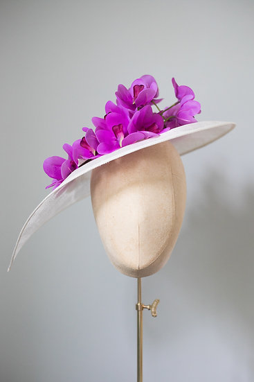Ascot Orchid