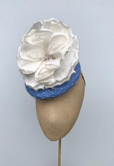 Ascot cornflower