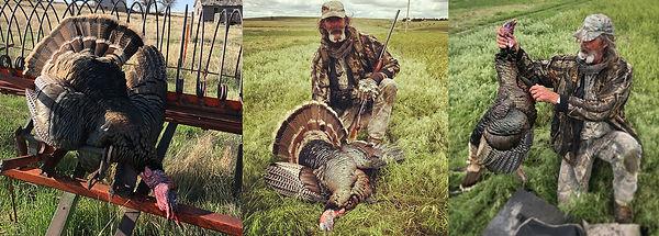 Kansas Turkey Hunting Guide, Kansas Hunting Guide