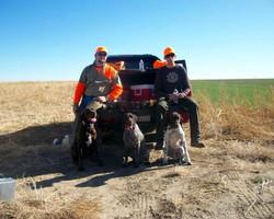 Kansas Bird Hunting