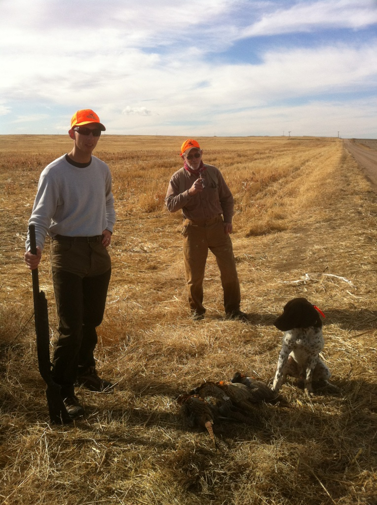 Kansas Pheasant Hunting Guide