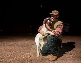 Bird Hunting Dog, Pea