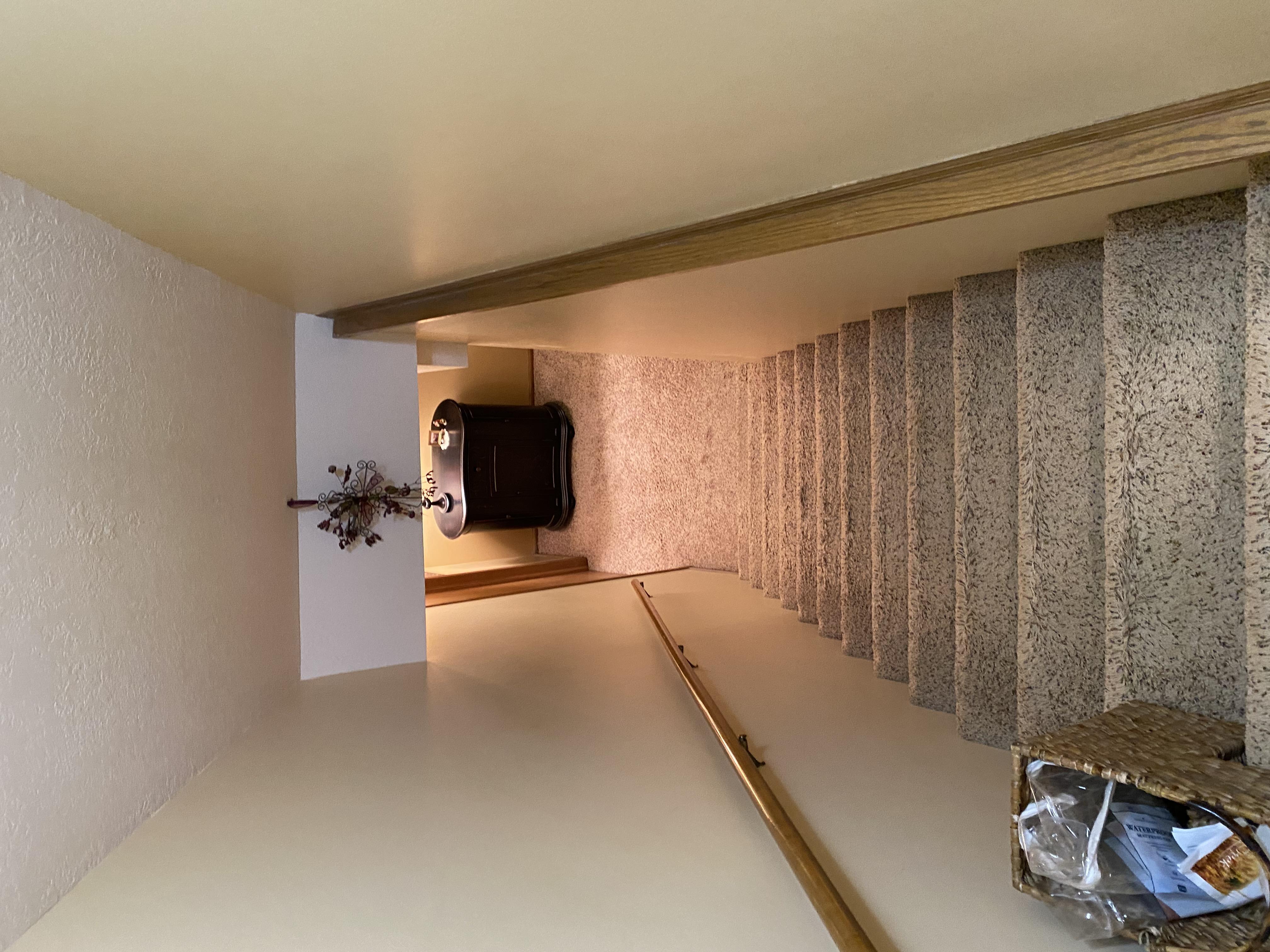 2058 HIllside Ave Mondamin basement1