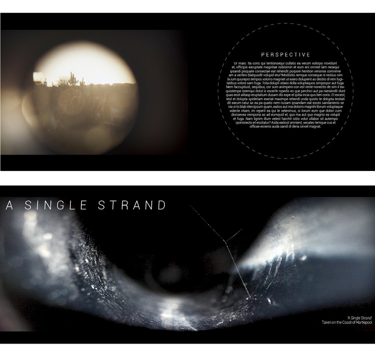 TUNNEL VISION BOOK SPREADS