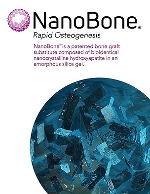 R025.1_NanoBone Brochure_thumb.jpg