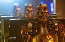 Terminator Factory Line Gold