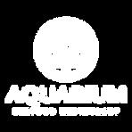 Aquawhitetrans.png