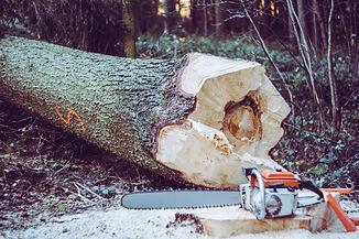 chainsaw%20near%20tree%20log_edited.jpg