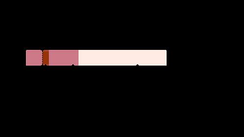 Graficos texto prinicpal(8).png