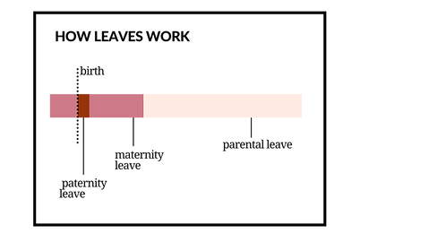 Graficos texto prinicpal (7).png