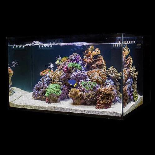 C-Vue All-In-One Aquariums