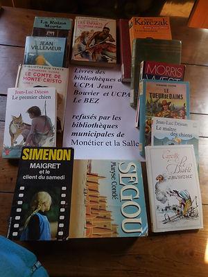 (89) Livres, colection Alain Coduri (89)