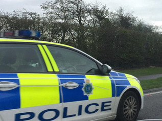 Merseyside Police rescue a dog from the Formby bypass