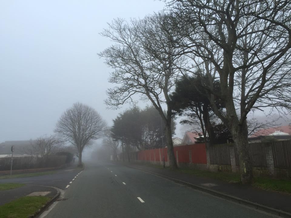 Bushbys Lane in the fog.jpg