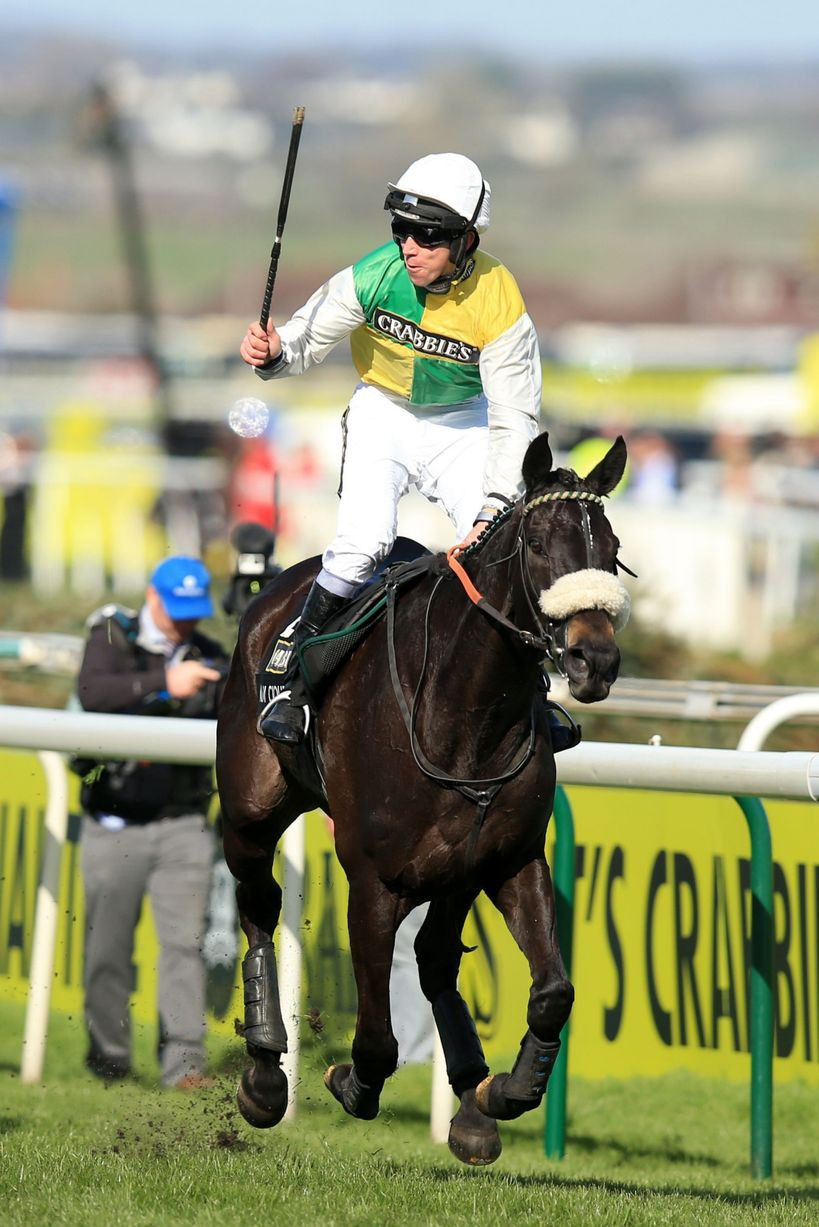 Many Clouds with Jockey Leighton Aspell celebrates his victory.jpg