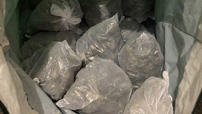 Man arrested for possession with intent and large amounts of cannabis discovered in Sefton