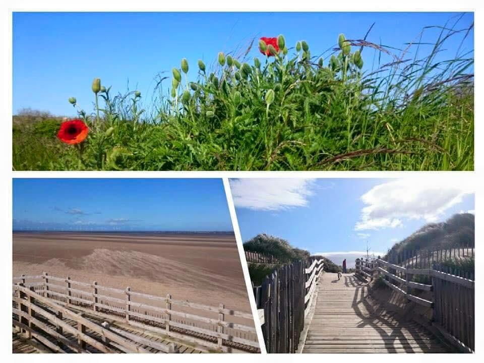 Diane Ainsworth Brockbank - Formby Beach.jpg