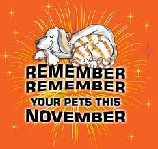 Bonfire Night is scary for your pets....Here's Our Advice