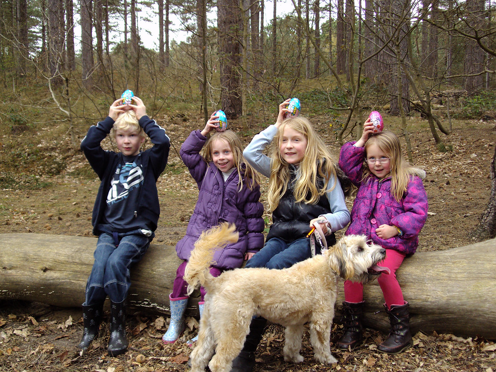 Cadbury Easter Egg Trail NT.JPG