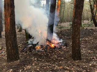 Fire started in Formby woods