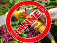 Hosepipe Ban is set for Formby from August 5th after longest heatwave for 40 years!