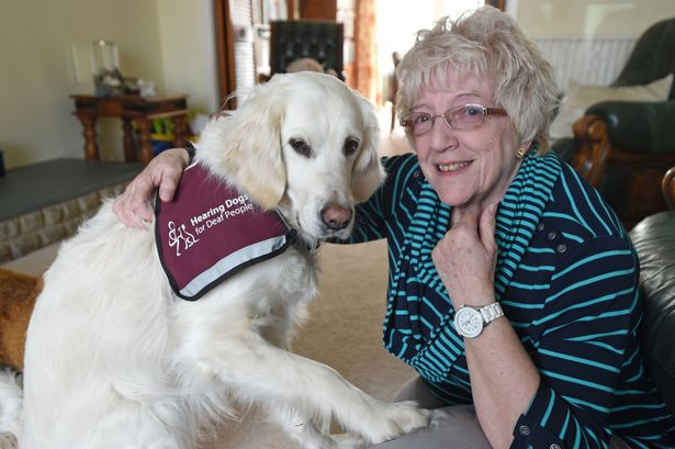 Mary Molloy with hearing dog Brie.jpg