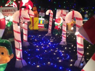 Go and see the beautiful Christmas Lights of Beechwood and pop some change in the pot for Formby you