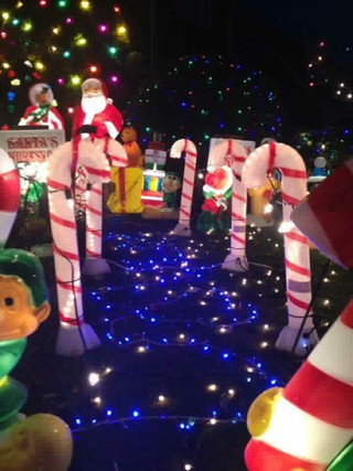 Last few days to see the beautiful Christmas Lights of Beechwood as they come to an end this Saturda