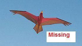 kite John Norbury.jpg