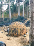 The War of the Worlds has been shooting in Formby woods and is set to appear on BBC One this Christm